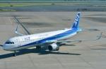 Dojalanaさんが、羽田空港で撮影した全日空 A321-211の航空フォト(飛行機 写真・画像)