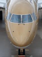 名無しの権兵衛さんが、新潟空港で撮影したフジドリームエアラインズ ERJ-170-200 (ERJ-175STD)の航空フォト(写真)