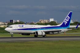 yabyanさんが、伊丹空港で撮影した全日空 737-881の航空フォト(写真)