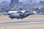 Orange linerさんが、名古屋飛行場で撮影した航空自衛隊 C-130H Herculesの航空フォト(写真)