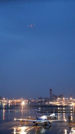 誘喜さんが、羽田空港で撮影した日本航空 777-246/ERの航空フォト(写真)