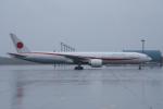 YAMMARさんが、千歳基地で撮影した航空自衛隊 777-3SB/ERの航空フォト(写真)