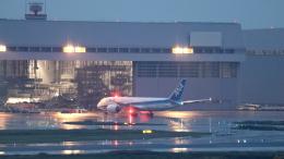 誘喜さんが、羽田空港で撮影した全日空 787-8 Dreamlinerの航空フォト(写真)
