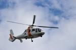 ハム太郎。さんが、羽田空港で撮影した東邦航空 SA365N1 Dauphin 2の航空フォト(写真)