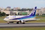 yabyanさんが、伊丹空港で撮影したANAウイングス 737-5L9の航空フォト(飛行機 写真・画像)