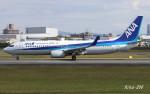 RINA-200さんが、伊丹空港で撮影した全日空 737-881の航空フォト(写真)