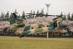 snoopyさんが、熊谷基地で撮影した航空自衛隊 CH-47J/LRの航空フォト(飛行機 写真・画像)