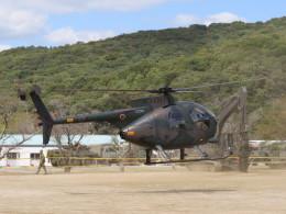 F.YUKIHIDEさんが、三軒屋駐屯地で撮影した陸上自衛隊 OH-6Dの航空フォト(飛行機 写真・画像)