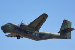 ちゃぽんさんが、アバロン空港で撮影したオーストラリア空軍 DHC-4A Caribouの航空フォト(飛行機 写真・画像)