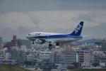 ぬま_FJHさんが、那覇空港で撮影したANAウイングス 737-54Kの航空フォト(写真)