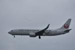 ぬま_FJHさんが、那覇空港で撮影した日本トランスオーシャン航空 737-8Q3の航空フォト(写真)