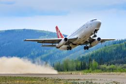 BOSTONさんが、ドーソンシティ空港で撮影したエア・ノース 737-2X6C/Advの航空フォト(飛行機 写真・画像)
