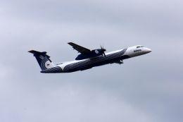 まいけるさんが、成田国際空港で撮影したオーロラ DHC-8-402Q Dash 8の航空フォト(写真)