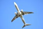 bunshikiさんが、中標津空港で撮影した全日空 737-881の航空フォト(写真)