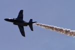 kaeru6006さんが、浜松基地で撮影した航空自衛隊 T-4の航空フォト(写真)