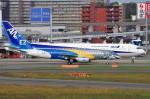 mild lifeさんが、伊丹空港で撮影したエンブラエル ERJ-190-300 STD (E190-E2)の航空フォト(写真)