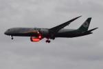 Timothyさんが、成田国際空港で撮影したエバー航空 787-9の航空フォト(写真)