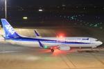 airportfireengineさんが、羽田空港で撮影した全日空 737-881の航空フォト(写真)