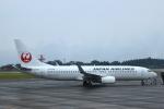 non-nonさんが、鹿児島空港で撮影した日本航空 737-846の航空フォト(写真)