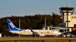 AXTファン210さんが、秋田空港で撮影した全日空 737-881の航空フォト(写真)