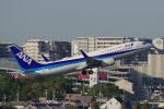 yabyanさんが、伊丹空港で撮影した全日空 737-881の航空フォト(飛行機 写真・画像)