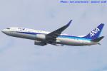 いおりさんが、岩国空港で撮影した全日空 737-881の航空フォト(写真)