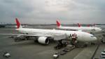 westtowerさんが、成田国際空港で撮影した日本航空 777-346/ERの航空フォト(写真)