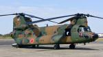 パンダさんが、下総航空基地で撮影した陸上自衛隊 CH-47JAの航空フォト(写真)