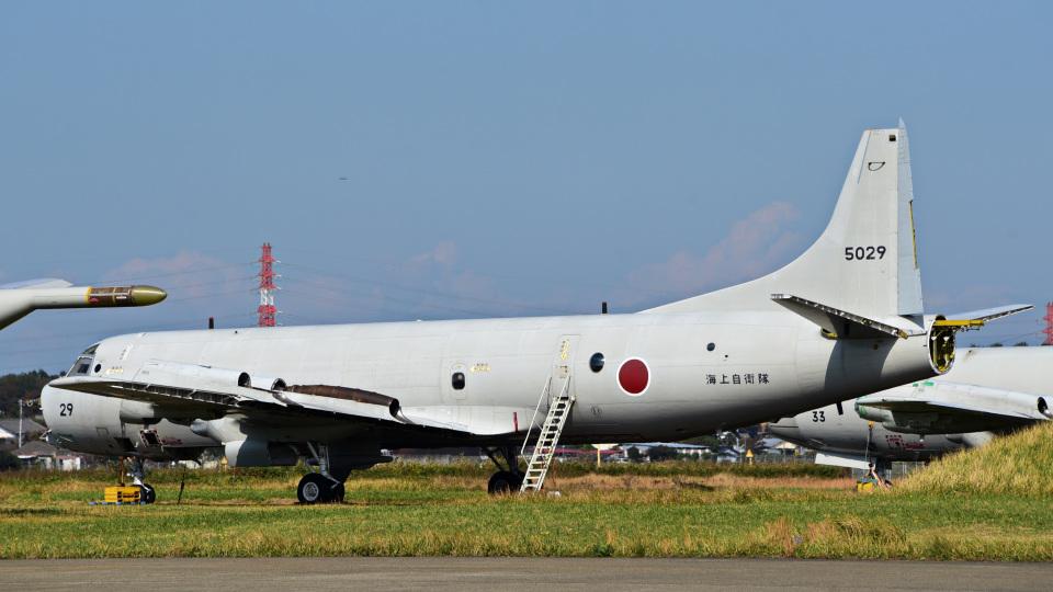 パンダさんの海上自衛隊 Kawasaki P-3C Orion (5029) 航空フォト