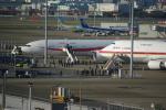 ぼのさんが、羽田空港で撮影した航空自衛隊 777-3SB/ERの航空フォト(飛行機 写真・画像)