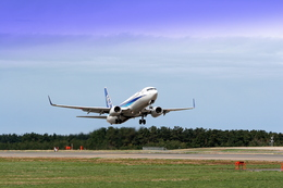 MJさんが、庄内空港で撮影した全日空 737-881の航空フォト(飛行機 写真・画像)
