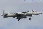 いおりさんが、岩国空港で撮影したアメリカ海兵隊 AV-8B Harrier IIの航空フォト(写真)