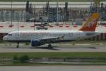 たみぃさんが、スワンナプーム国際空港で撮影したドゥルク航空 A319-115の航空フォト(写真)