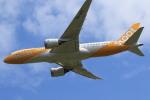 rokko2000さんが、成田国際空港で撮影したスクート 787-8 Dreamlinerの航空フォト(写真)