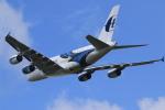 rokko2000さんが、成田国際空港で撮影したマレーシア航空 A380-841の航空フォト(写真)