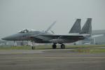 セブンさんが、千歳基地で撮影した航空自衛隊 F-15J Eagleの航空フォト(飛行機 写真・画像)