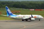 セブンさんが、新千歳空港で撮影した全日空 737-881の航空フォト(写真)