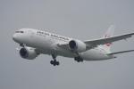 神宮寺ももさんが、台湾桃園国際空港で撮影した日本航空 787-8 Dreamlinerの航空フォト(写真)