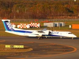 SK51Aさんが、新千歳空港で撮影したANAウイングス DHC-8-402Q Dash 8の航空フォト(写真)