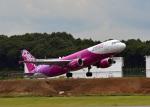 鈴鹿@風さんが、成田国際空港で撮影したピーチ A320-214の航空フォト(写真)