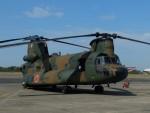 Smyth Newmanさんが、下総航空基地で撮影した陸上自衛隊 CH-47JAの航空フォト(写真)