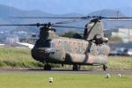 つっさんさんが、八尾空港で撮影した陸上自衛隊 CH-47Jの航空フォト(写真)