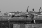 RUNWAY23.TADAさんが、羽田空港で撮影した日本航空 787-8 Dreamlinerの航空フォト(写真)