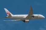 RUNWAY23.TADAさんが、成田国際空港で撮影した日本航空 787-8 Dreamlinerの航空フォト(写真)