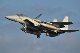 航空フォト:02-8916 航空自衛隊 F-15J Eagle