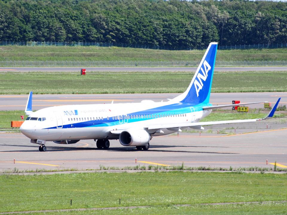 むらさめさんの全日空 Boeing 737-800 (JA56AN) 航空フォト