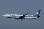 とらとらさんが、成田国際空港で撮影した全日空 737-881の航空フォト(写真)
