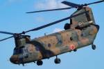 ROSENTHALさんが、八尾空港で撮影した陸上自衛隊 CH-47Jの航空フォト(写真)
