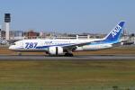 sumihan_2010さんが、伊丹空港で撮影した全日空 787-8 Dreamlinerの航空フォト(写真)