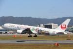 安芸あすかさんが、伊丹空港で撮影した日本航空 767-346/ERの航空フォト(写真)